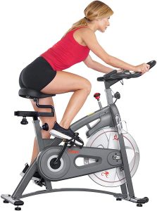 Sunny Health & Fitness Endurance Series Magnetic Indoor